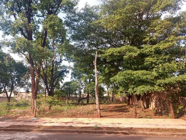Excelente terreno no Vilas Boas 584,88 m² - (67) 99292-9002