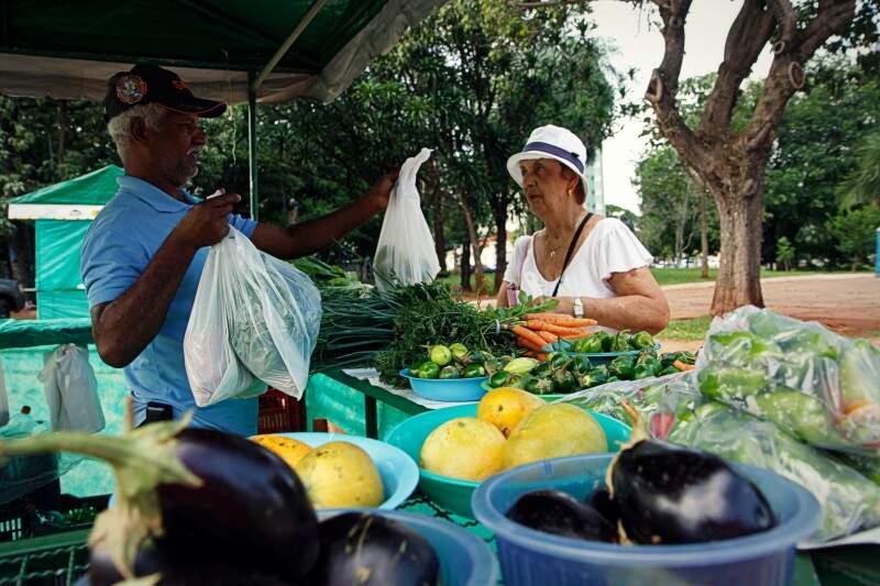 Produtos são comercializados em feiras montadas no centro da cidade. (Foto: Cleber Gellio)