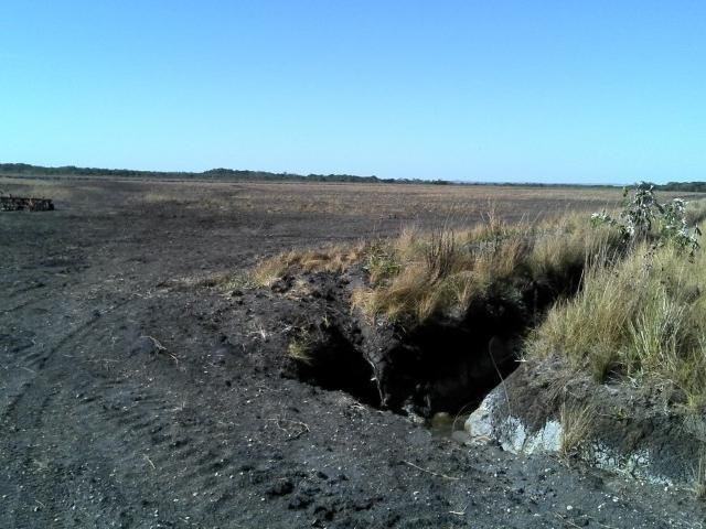 Imagem da PMA mostra área drenada com agricultura. (Foto: Divulgação)
