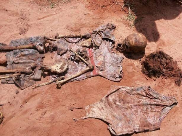 Ossadas e objetos encontrados durante escavações na manhã desta segunda-feira (19). (Foto: Polícia Civil)