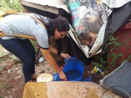 Em situação de emergência, cidade tem 477 casos de dengue e 3 mortes