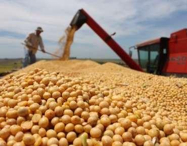 MS duplica produção de grãos em três anos, mas ainda busca rota asiática