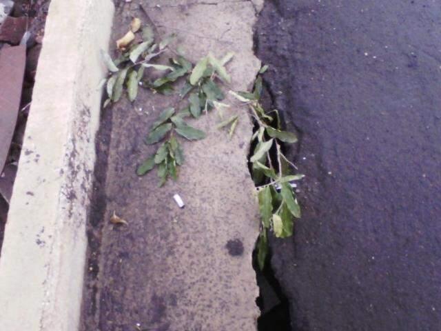 Asfalto cedendo na Rua Vitório Zeolla (Foto: Direto das Ruas)