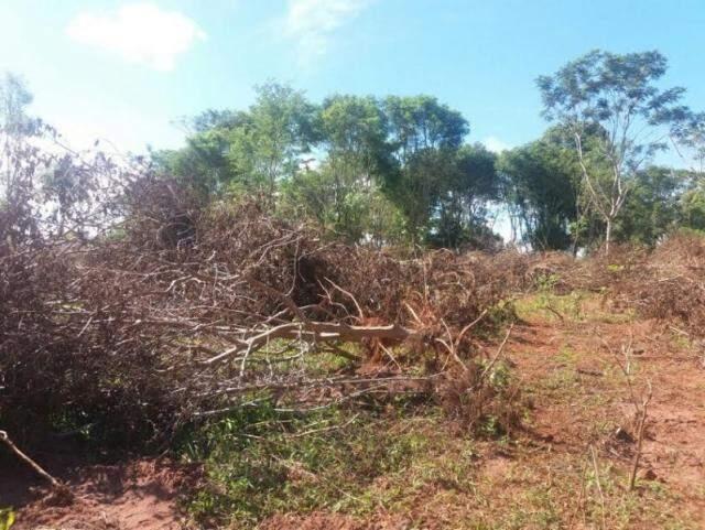Área desmatada fica em fazenda alvo de disputa judicial (Foto: Divulgação/PMA)