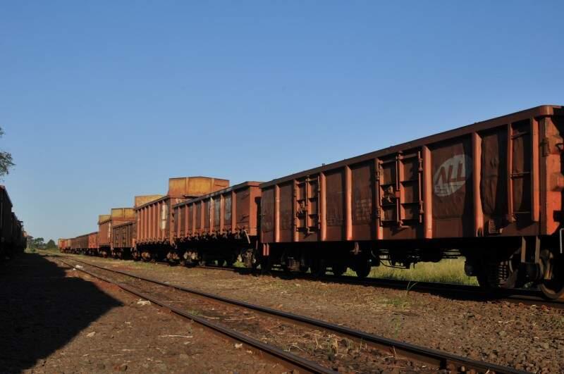 Vagões sem carga permanecem parados na empresa. (Foto: Alcides Neto)