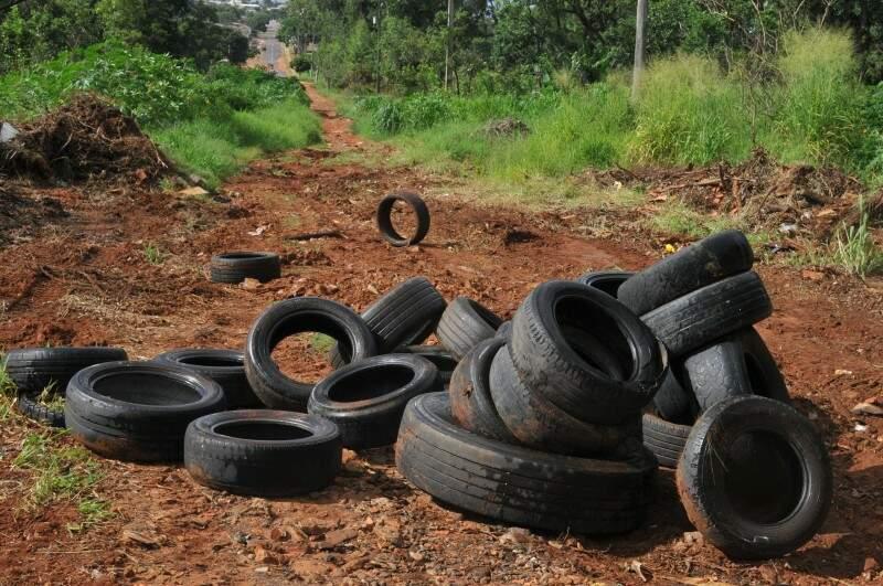 Os pneus estão acumulados no meio da via há quase 15 dias. (Foto: Alcides Neto)