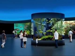 Projeção da parte interna do aquário (Foto: Reprodução)