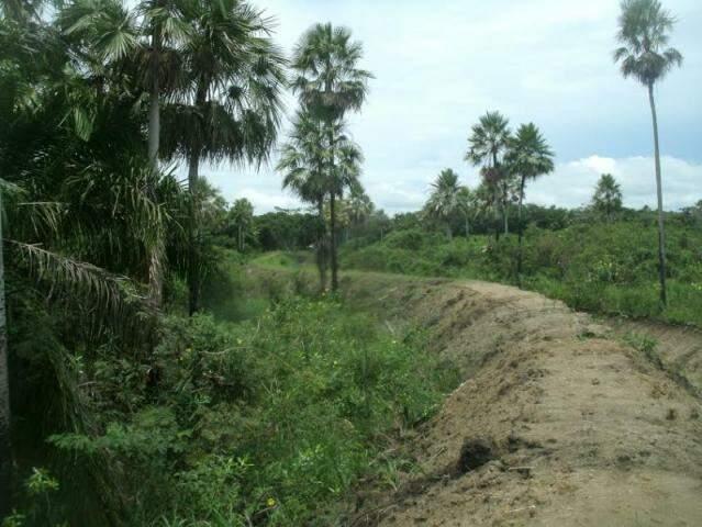 Dique foi construído por fazendeiro e resultou em multa para ele (Foto: Divulgação/PMA)