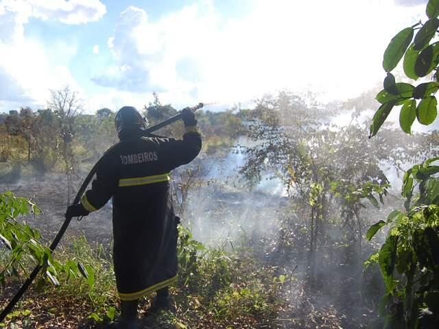 O incêndio só foi controlado por volta das 16 horas pelo Corpo de Bombeiros. (Foto: Marlon Ganassin)
