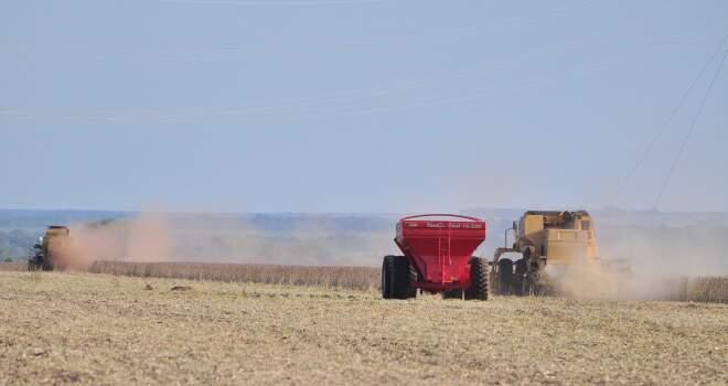 Máquinas trabalham durante colheita em Sidrolândia. (Foto: João Garrigó)