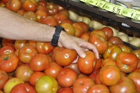 Tomate apresenta alta de 12,49% e inflaciona cesta básica na Capital