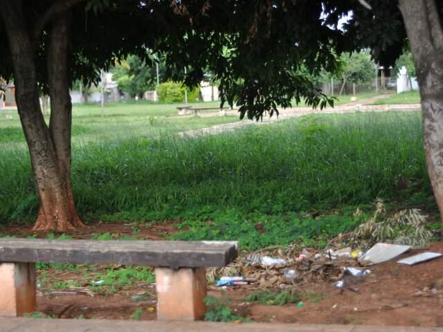 Praça na Vila Almeida com mato alto e material orgânico acumulado (Foto: Marlon Ganassin)
