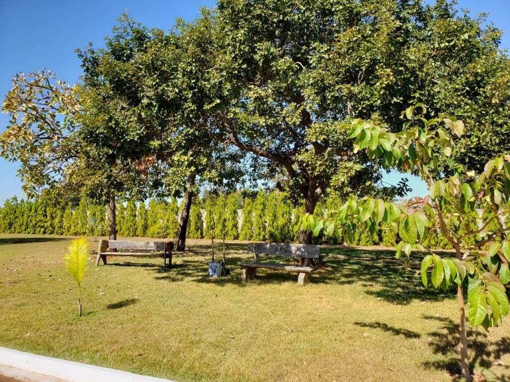 Famílias encontram um espaço de tranquilidade, cercado pelo verde. (Foto: Divulgação)