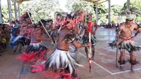 Ministério declara área de 33 mil hectares como terra indígena em MS