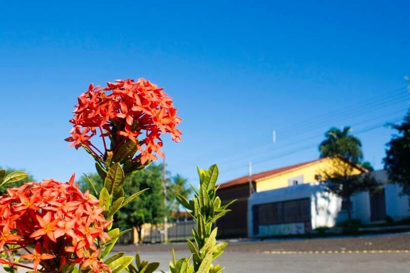 Dia será bastante quente na Capital nesta sexta-feira (Foto: Marcos Ermínio)