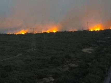 Com faixa de fogo de 50 km, equipes voltam a sobrevoar queimadas