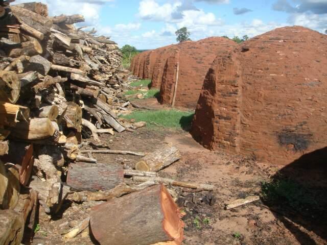 Entre as irregularidades, carvoarias não possuíam autorização para explorar lenha. (Foto: Divulgação)