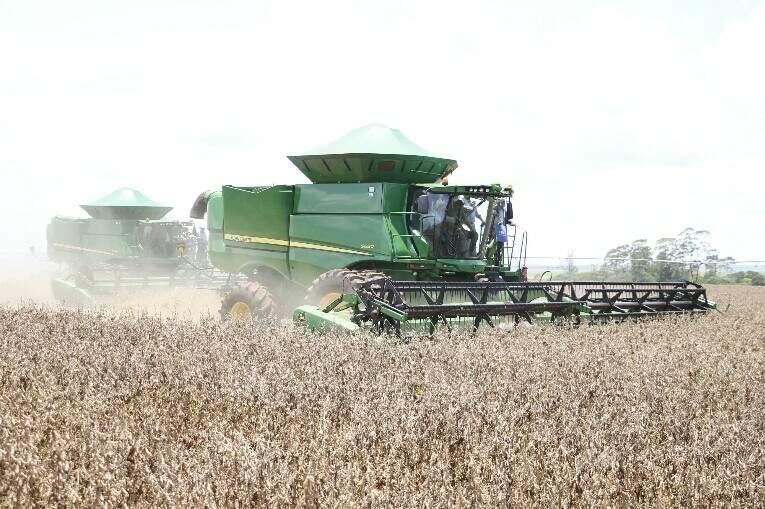 Colheita da soja começou oficialmente ontem. (Foto: Helio de Freitas)