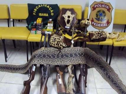 Após oito anos, maioria de crimes por caça a onça no Pantanal caduca