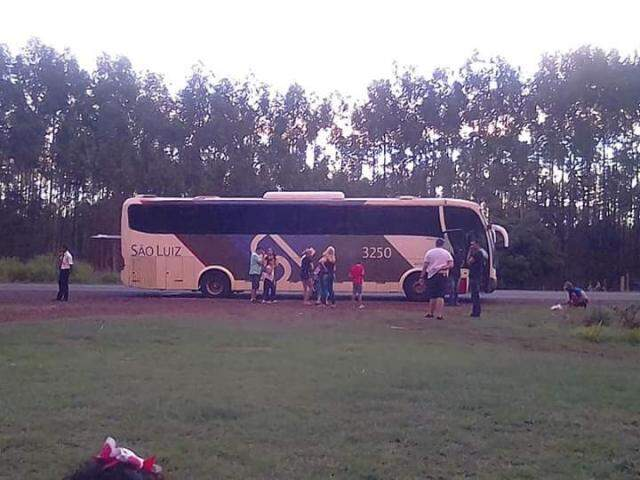Ônibus parado às margens da rodovia por falta de combustível (Foto:Reprodução Redes Sociais)