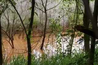 Cenário hoje no lago do Rádio Clube é de muita terra e pouca água. (Foto: Henrique Kawaminami)