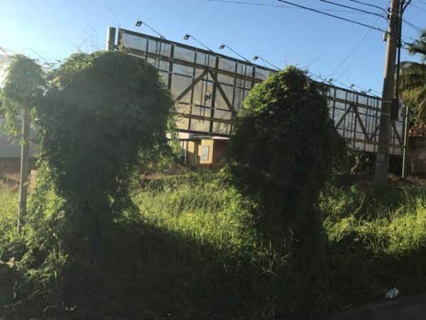 Imagem atual do cruzamento (Foto: Direto das Ruas)