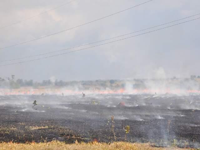 Estado registra neste ano o dobro de focos de incêndios. (Foto: João Garrigó)