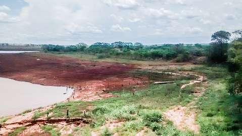 Estiagem do rio Paraná compromete produção de peixes e gado de MS
