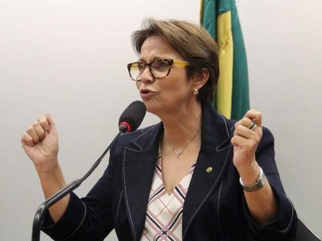 Deputada Tereza Cristina vai liderar bancada na Câmara. (Foto: Assessoria)