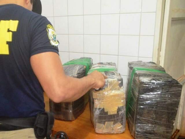 Maconha foi comprada em Ponta Porã e seria comercializada em Cuiabá. (Foto: Angela Bezerra/ Edição de Notícias)