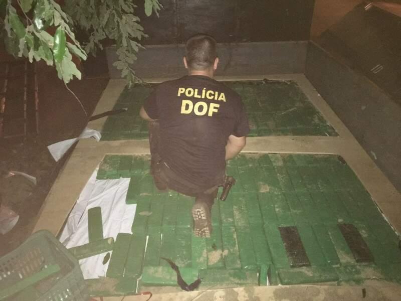 Droga apreendida serviria para abastecer o tráfico na capital paulista (Foto: Divulgação/Polícia Civil)