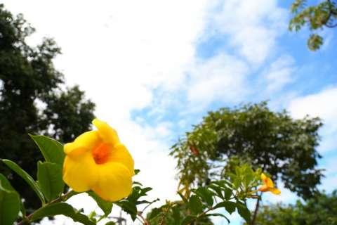 Verão chega dia 21 e traz máxima de 35ºC, chuvas e alerta para raios