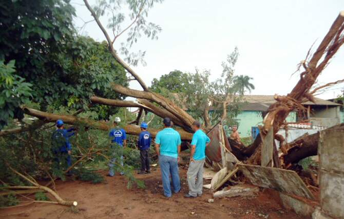 Pelo menos 40 casas ficaram sem energia. (Foto: Sidney Assis)