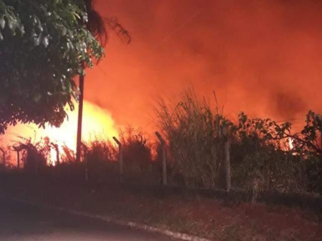 Incêndio em terreno abandonado mobilizou Corpo de Bombeiros. (Foto: Direto das Ruas)