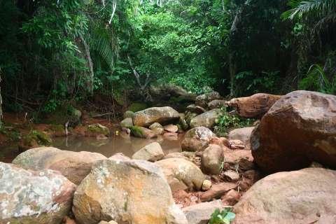 Imasul estabelece regras para manejo de áreas de conservação
