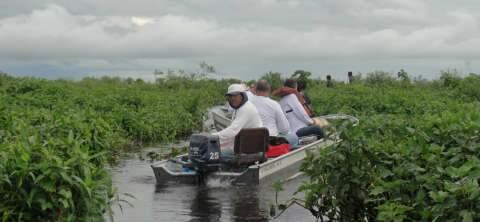 Grupo de pescadores testemunha escassez de peixes no rio Paraguai
