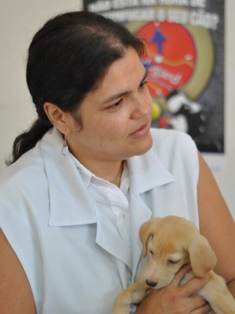 Veterinária diz que esperança de que Mel volte a andar é mínima. Trabalho é para dar melhor qualidade de vida à cadelinha.
