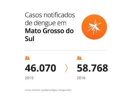 Capital fecha ano com dobro de casos de dengue e redobra alerta para 2017