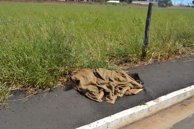 Embolado em um cobertor, o cachorro estava em estado de decomposição (Foto: Mariana Lopes)