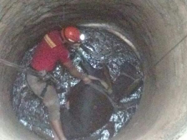 Poço tem 13 metros de profundidade e animal foi resgatado com vida. (Foto: Divulgação/ Corpo de Bombeiros)