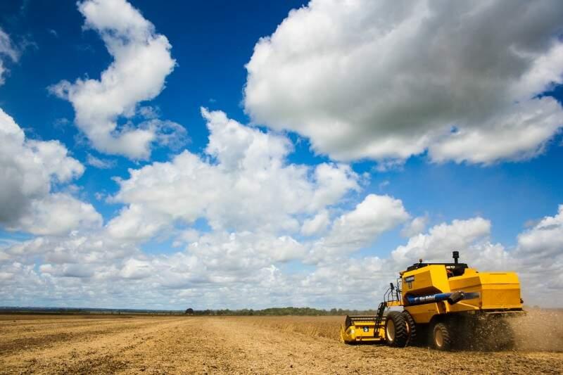 Segundo IBGE, produção total nos meses de maio e junho foi de 15,3 milhões de toneladas. (Foto: Marcos Ermínio)
