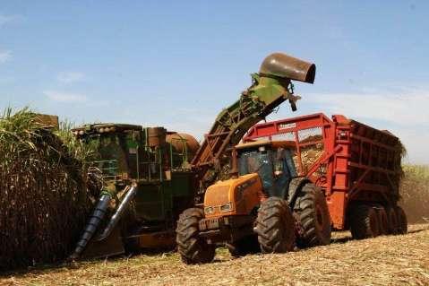 Exportações de soja e carne bovina caem até 40% e açúcar e álcool cresce