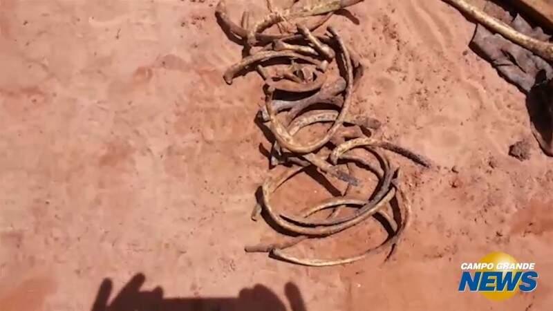 Polícia Civil divulga vídeos de novas ossadas encontradas