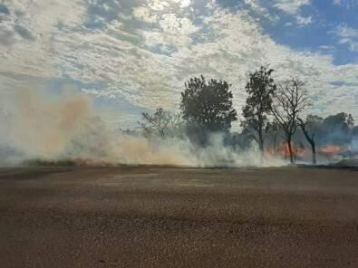 O incêndio na área destruiu um hectare da vegetação (Foto: Ronie Cruz)