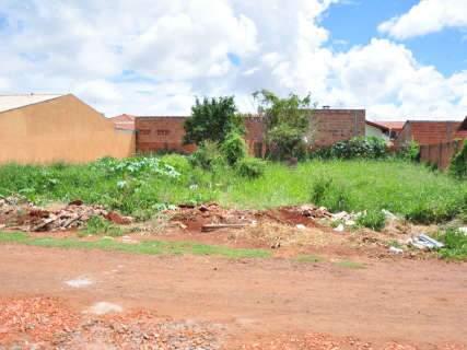 No centro ou pelos bairros, terrenos cheios de mato são problema