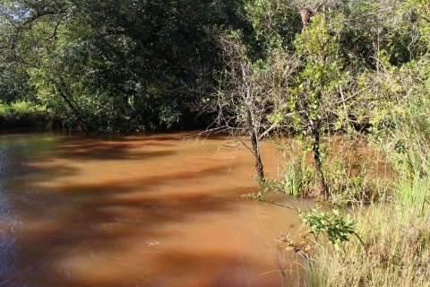 Corpo foi desovado em rio e estava enroscado em galhos, diz testemunha