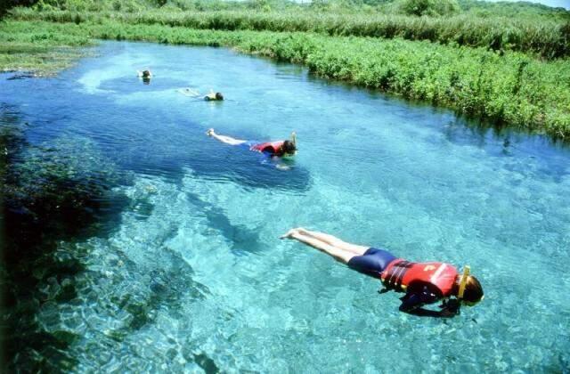 Turistas estrangeiros encontram em MS uma diversidade na fauna e flora. (Foto: Bonito Tour)
