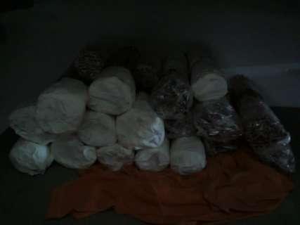 Policiais encontram cocaína, celulares e maconha durante pente fino