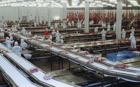 Centro-Oeste lidera exportação de carne bovina no primeiro trimestre