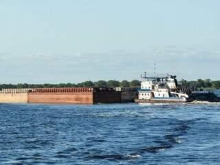 ONG acredita que uma vez liberado tráfego de embarcações, hidrovia traga prejuízos ambientais (Foto: divulgação)
